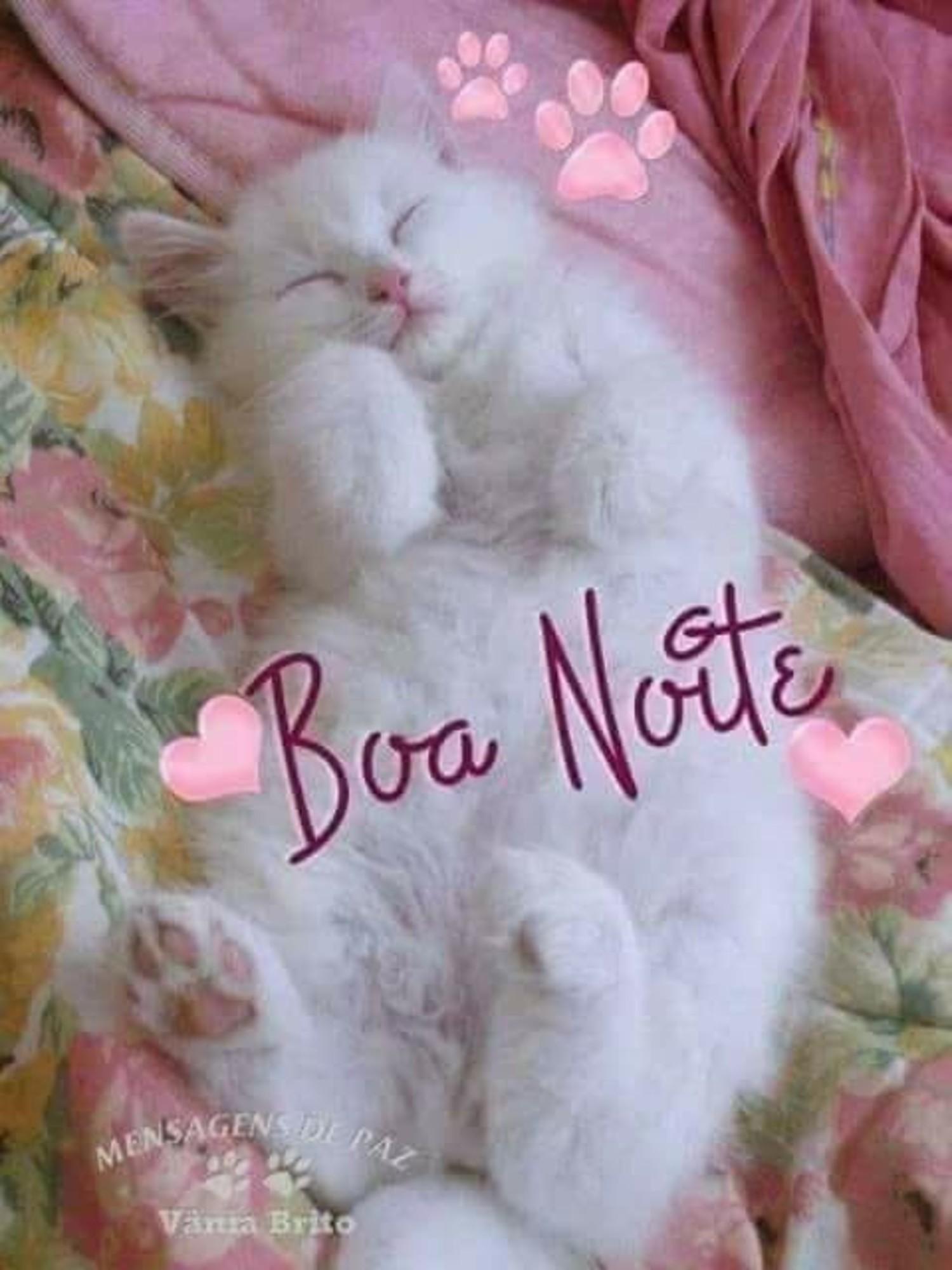 Boa Noite 168