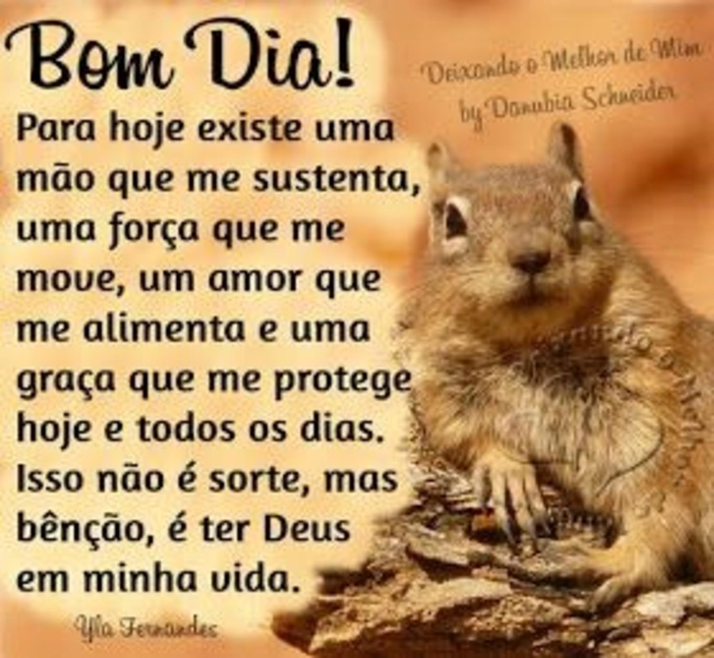 Imagens Bom Dia para Facebook 323