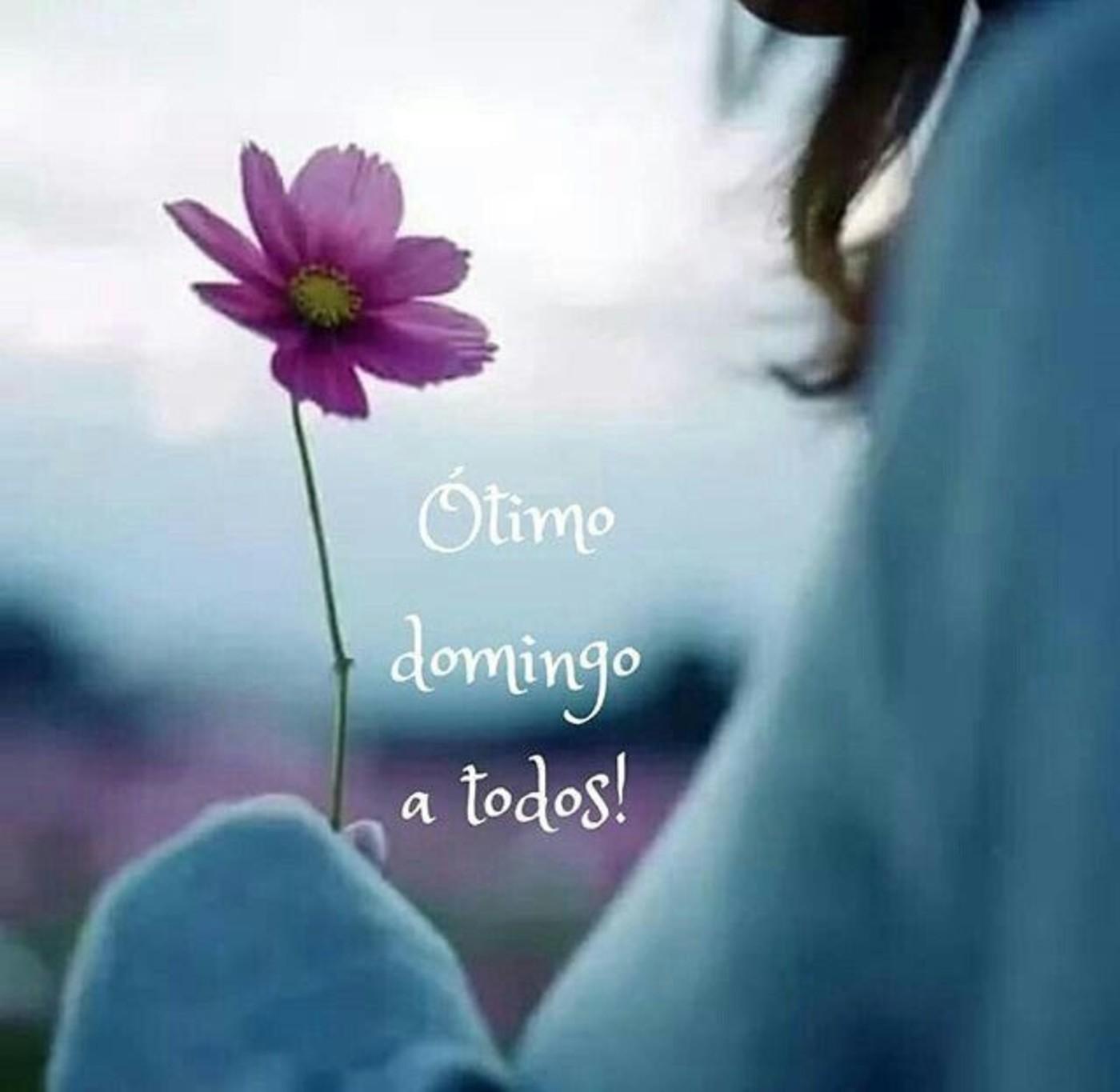 Imagens Feliz Domingo 14