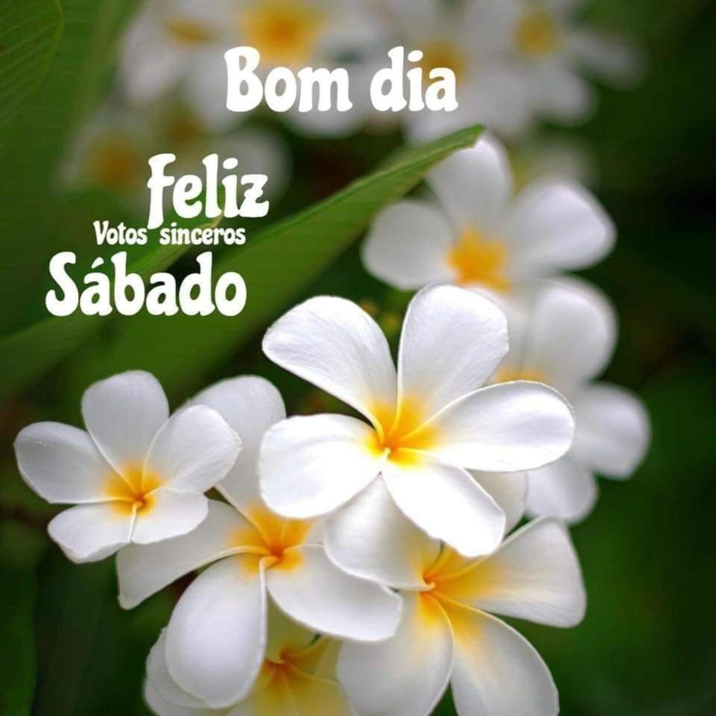Imagens bonitas feliz sábado Whatsapp 148