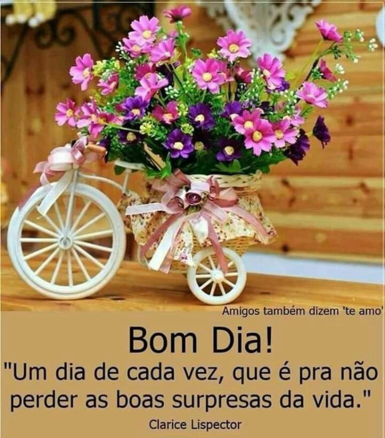 Imagens Bom Dia de amizade 996