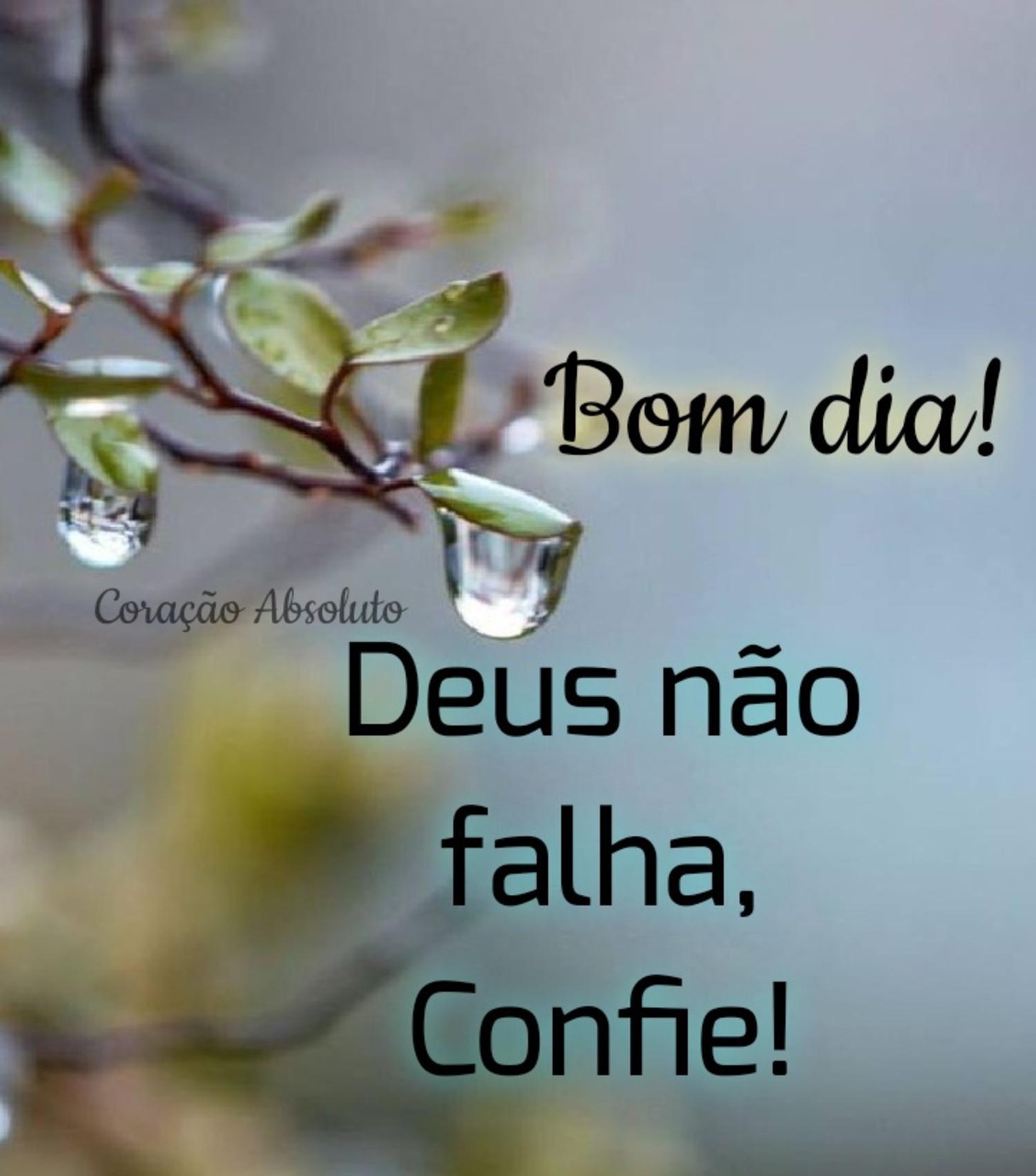 Bom dia Deus não falha confie